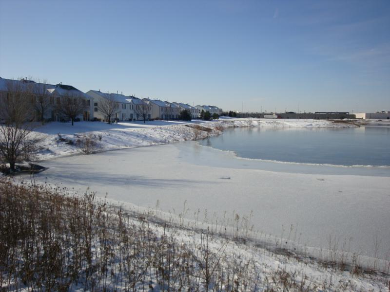 Ice spreads over Lake Carrolwood