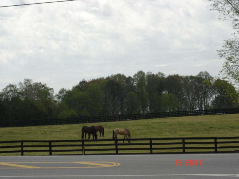 Real Estate, Cumming Ga, Polo Fields, Mls Listings, Buy House, Sell House