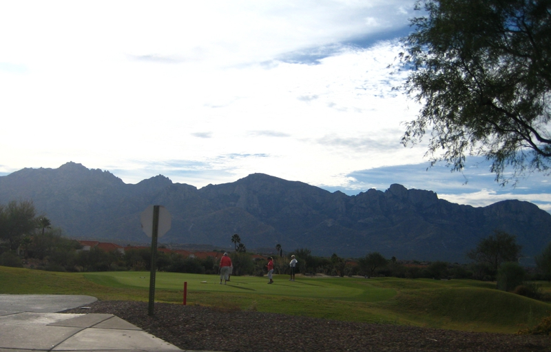 Sun City Oro Valley Homes - An Active Adult Community near Tucson, AZ