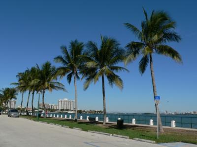 Miami Shores Boardwalk