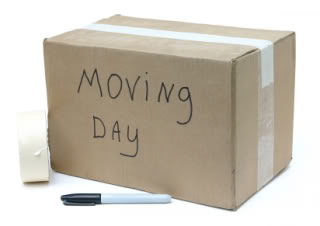 Basic Moving Tip