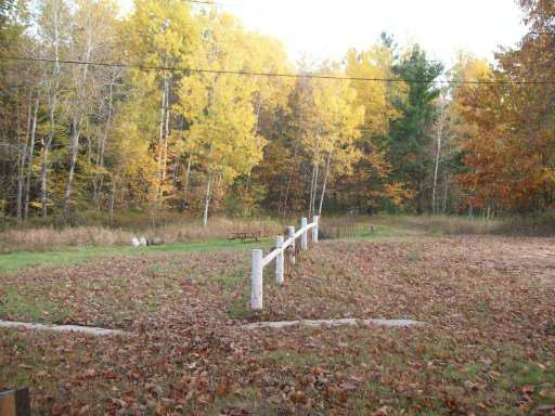 40 wooded acres