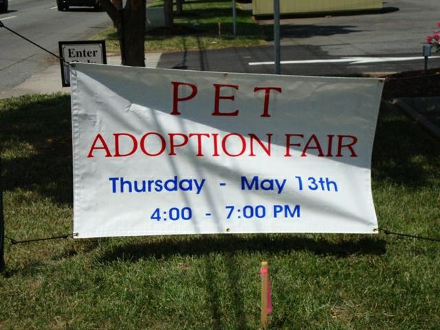 Banner - Pet Adoption Fair