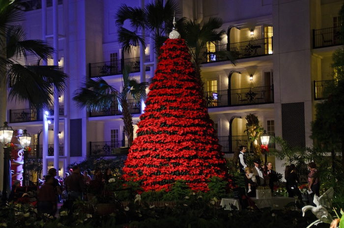 Poinsettia tree - Opryland Delta Atrium