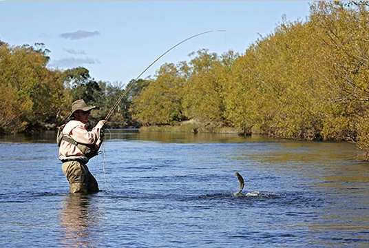 Downtown murphy weekly featured business appalachian for Fly fishing chattanooga