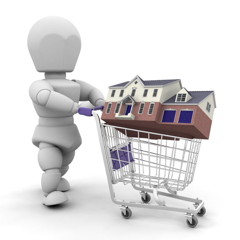 man with houses in shopping cart