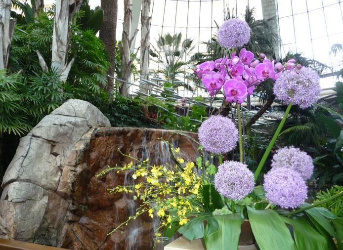 Orchids and waterfall HomeRome Realty