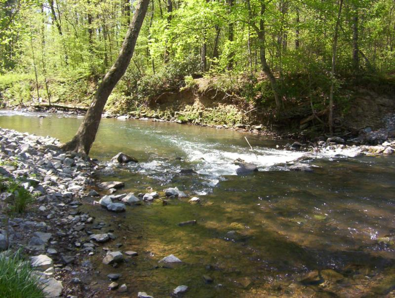 Looking to start a real estate career in the north georgia for Georgia trout fishing map