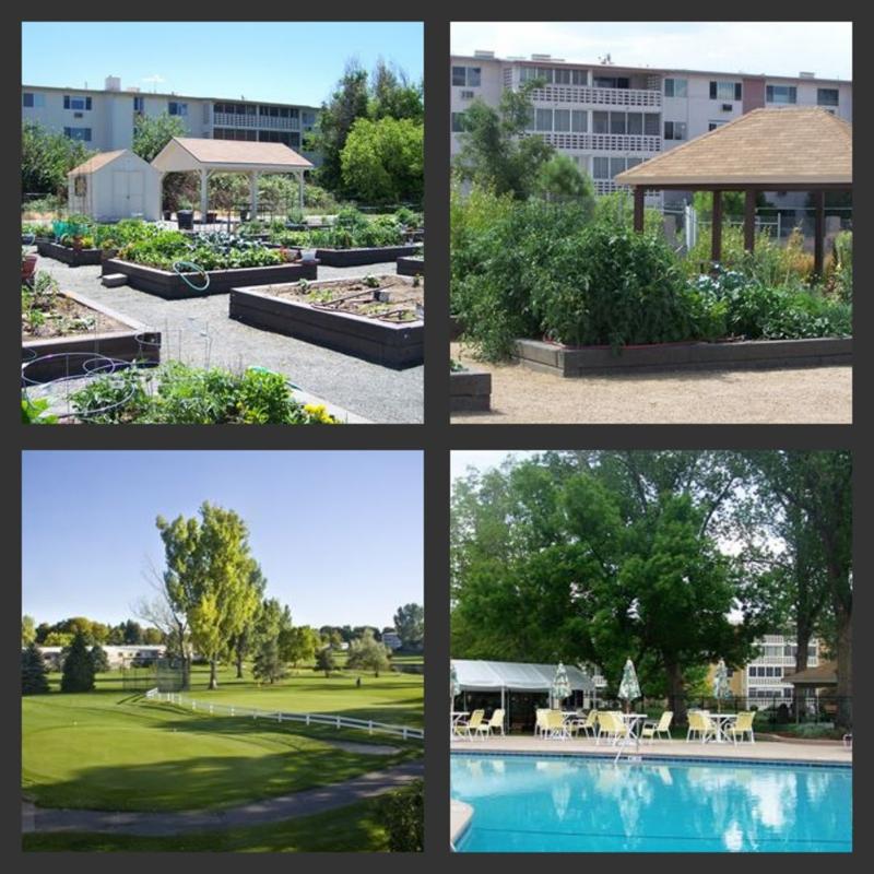 windsor gardens denver complex wide open house saturday august 20th