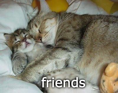 best friends via free images.com