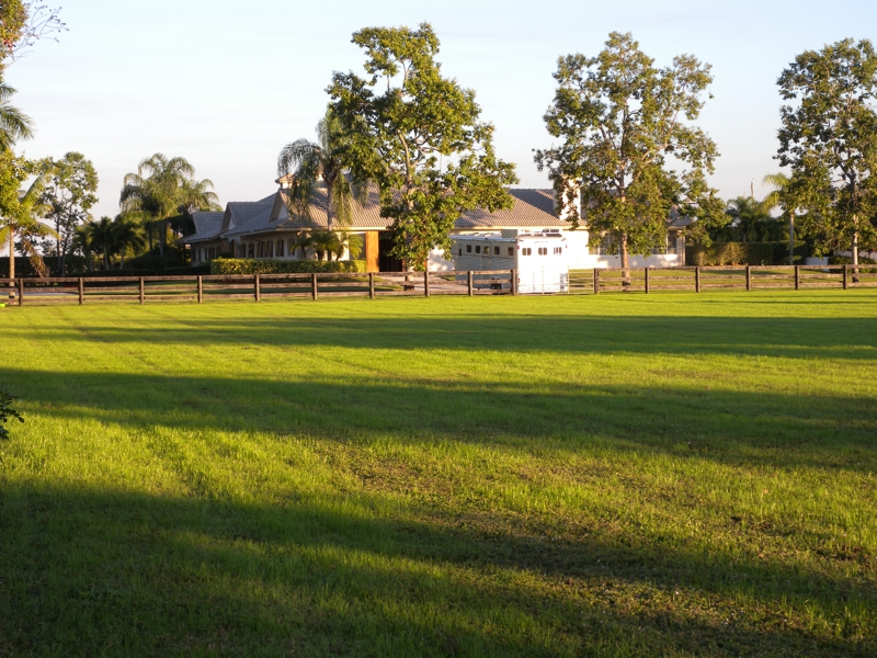 Wellington Equestrian Properties for sale