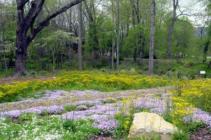 flower garden at entrance of drovers road preserve asheville area green-friendly  development