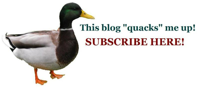 Just quack on me to subscribe