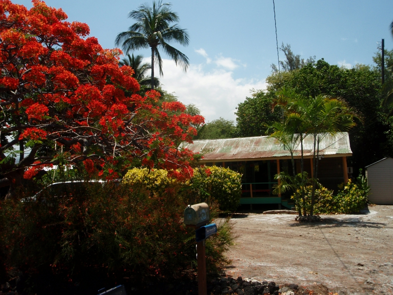 Puako Cottage for sale