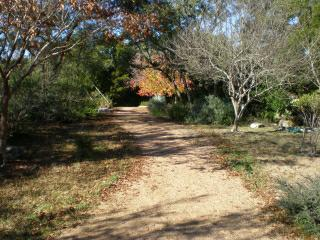 Hiking Trail Lakeway Texas