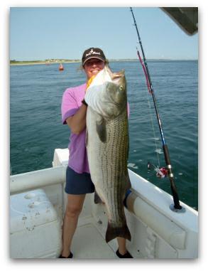 massachusetts saltwater recreational fishing requires