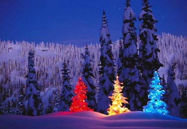 Christmas Scenes Around The World