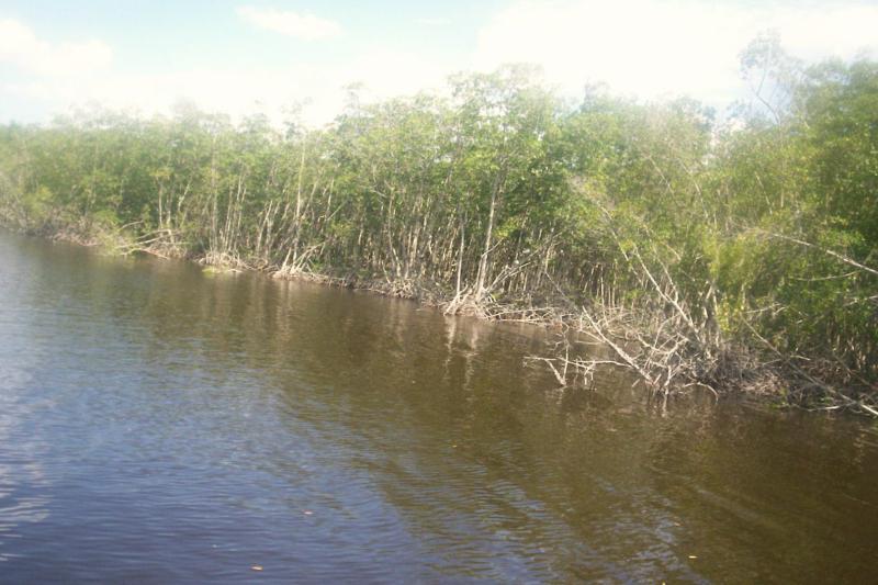 cape coral preserve