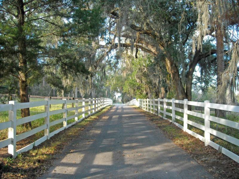Brooksville Fl Horse Farm House For Sale Rent Central
