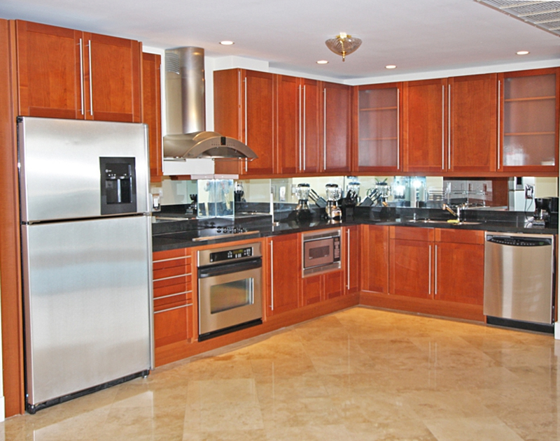 Roney Penthouse kitchen