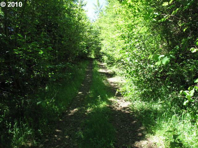 10 Acre lot for sale in Ariel, WA