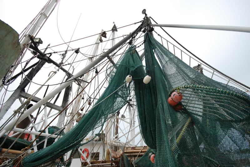 Trawling with nets