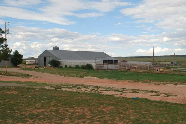 horse and cattle facilities, NM ranch
