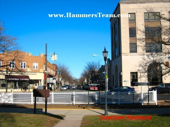 Westwood New Jersey Five Corners