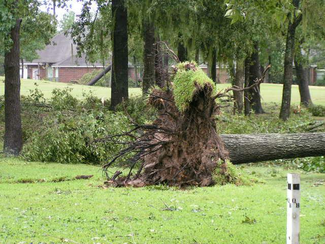 Hurricane Ike Damage in Walden on Lake Houston