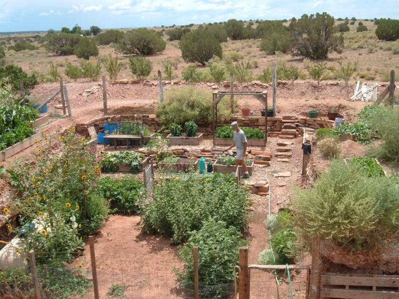 High Desert Vegetable Gardening Pictures to Pin on