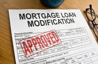 loan modification paddy deighan