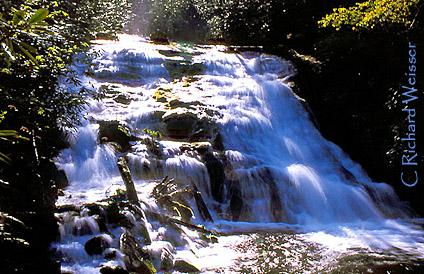 Indian Creek Falls in the Great Smoky Mountains National Park