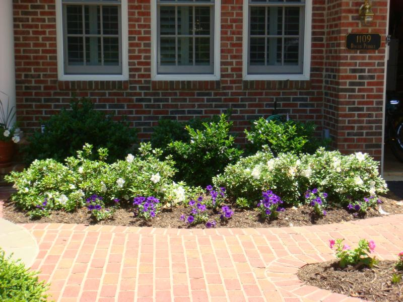 Getting Your House Ready To Sell Series Plants Shrubs By Front Door