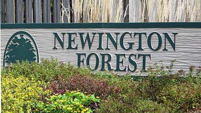 Newington Forest Entry
