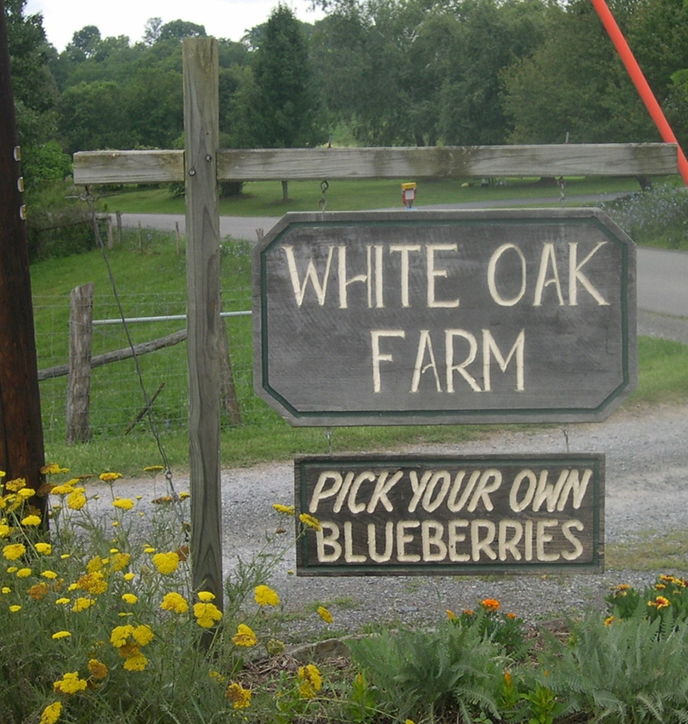White Oak Farm, Renick WV