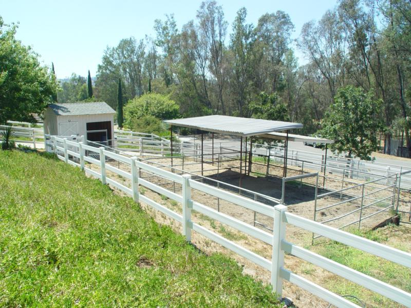 Horse Property in Poway - Arena