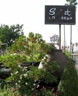 Sunset Boulevard Nursery Supplies Plants And Garden To Silver Lake Los Feliz Homeowners