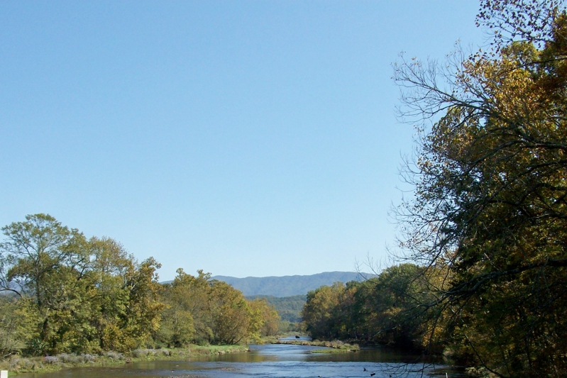 Holston River Homes For Sale