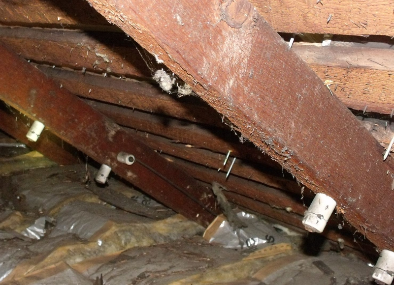 and Tube Wiring: Bellingham Home Inspector (King of the ... And Tube Wiring Home Inspection on insulation inspection, framing inspection, interior inspection, plumbing inspection, hvac inspection,