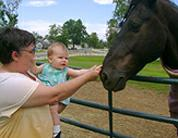 Monica Hess Kentucky Horse Park Feng Shui