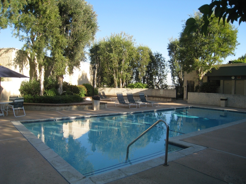 Los angeles ca it 39 s time to hit the pool in monterey hills for Pool show monterey