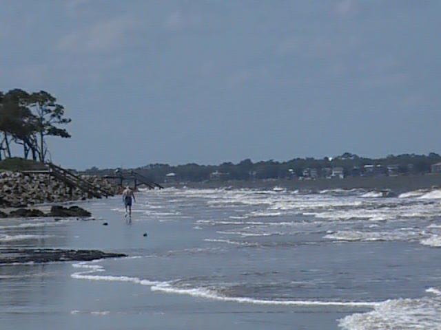 Nature Trails And Driftwood Beach On Jekyll Island More