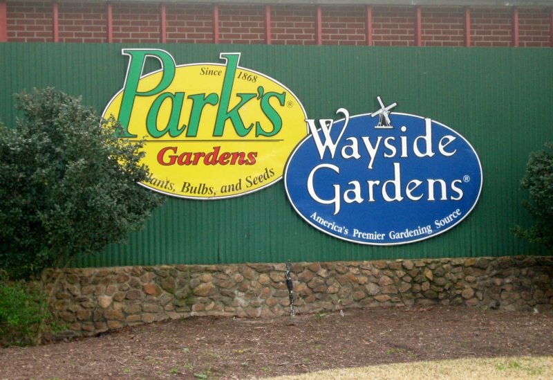 Park Seed And Wayside Gardens - Do You Get Their Catalogs?