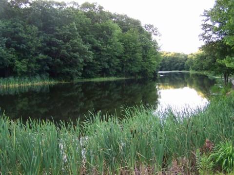 Rebecca Crosby Southern Rhode Island Real Estate
