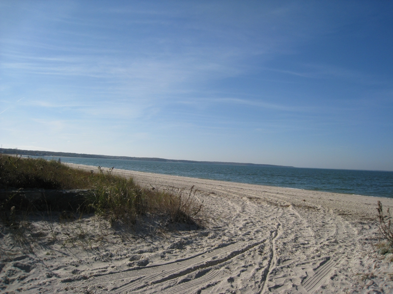 Great Peconic Bay Beach Southampton New York Why I Choose To Live Here