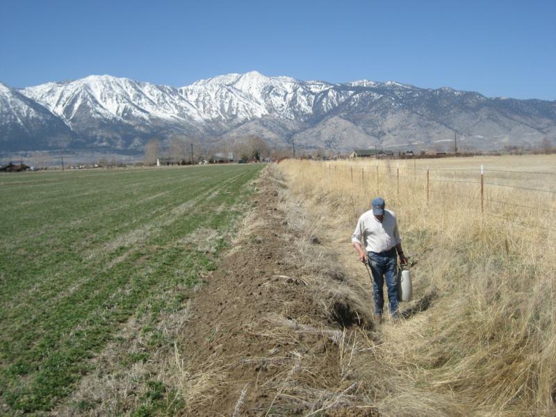 Burning the Ditch in Carson Valley ... Carson Valley Real estate