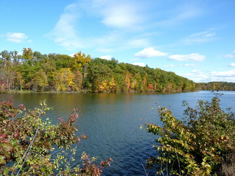 Autumn on the Thornapple River Grand Rapids Michigan