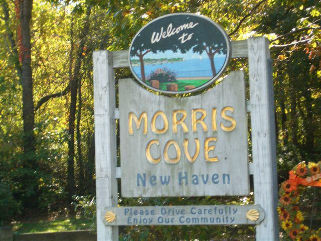 Morris Cove New Haven CT Market Report September 2008