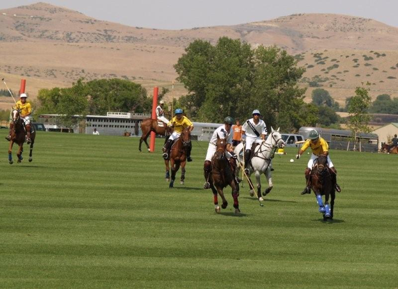 Polo in Big Horn