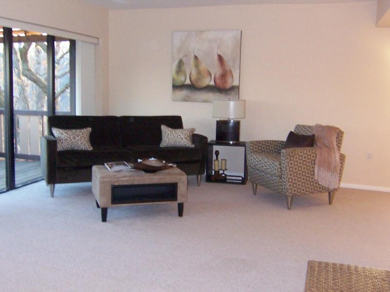 Baltimore Condo Courtesy The Dovian Group, LLC